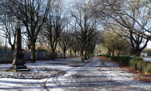 Centrul Natural din Birmingham