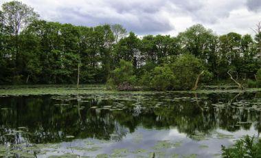 Parcul Colwick din Nottingham