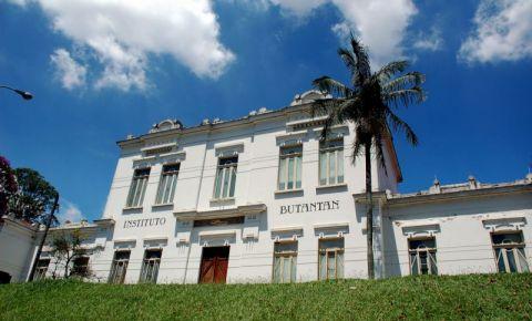 Institutul Butantan din Sao Paolo