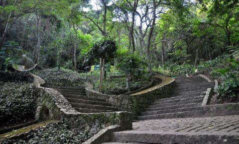 Parque da Catacumba din Rio de Janeiro