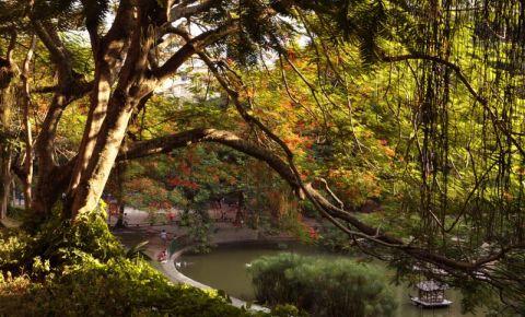 Parcul Guinle din Rio de Janeiro