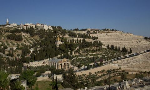 Muntele Maslinilor din Ierusalim