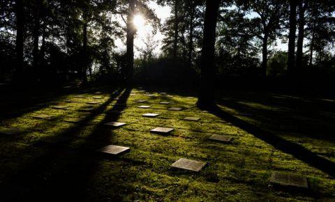 Cimitirul German Vladso din Ieper