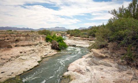 Parcul Clark County Wetlands din Las Vegas