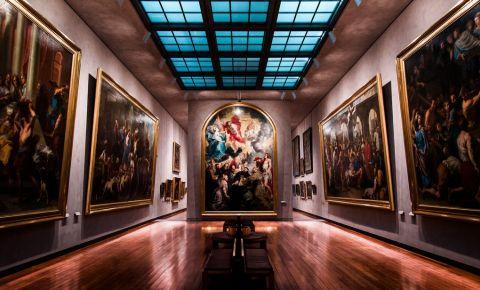 Muzeul de Arta din Lyon