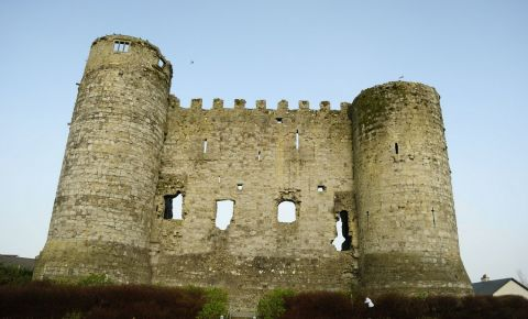 Castelul din Carlow