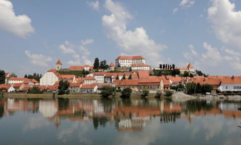 Castelul din Ptuj