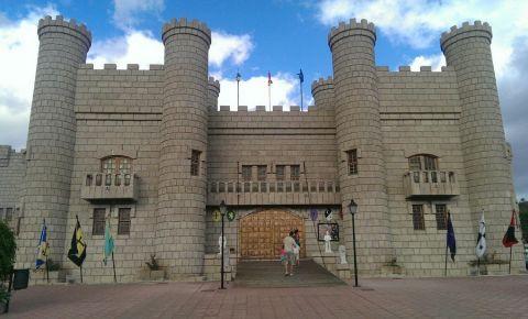Castelul San Miguel din Tenerife