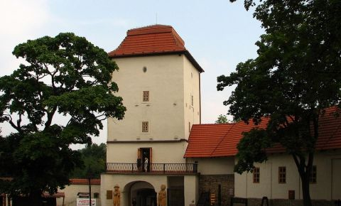 Castelul Silesian din Ostrava
