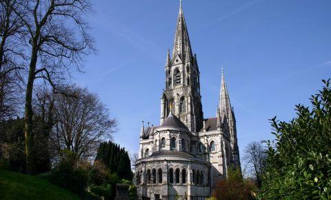 Catedrala Saint Fin Barre din Cork