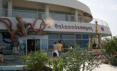 Acvariul CretAquarium din Heraklion