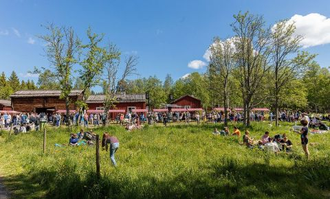 Complexul Gammlia din Umea