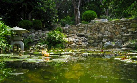 Gradina Botanica din Austin