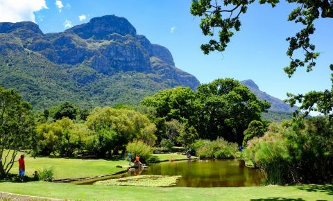 Gradina Botanica din Cape Town