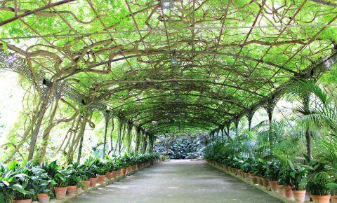 Gradina Botanica La Concepcion din Malaga