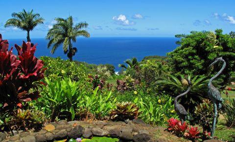 Gradina Botanica din Maui