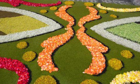 Gradina Botanica Orotava din Tenerife