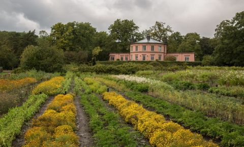 Gradina Botanica Rosendal din Stockholm