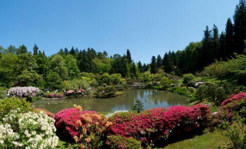 Gradina japoneza din Seattle