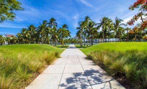 Insula Junglei din Miami
