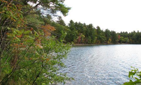 Lacul Walden Pond din Concord