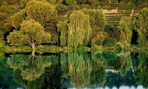 Lacul Max-Eyth din Stuttgart