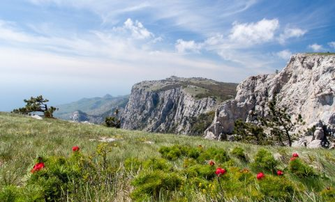 Muntele Ai Petri din Yalta