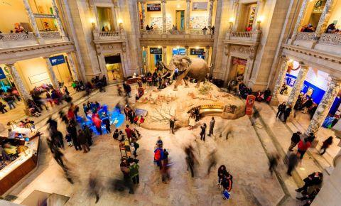 Muzeul National de Istorie Naturala din Washington