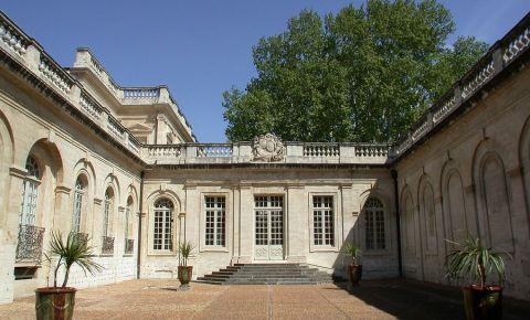 Muzeul Calvet din Avignon
