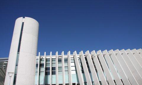 Muzeul de Arta Mexicana din Austin