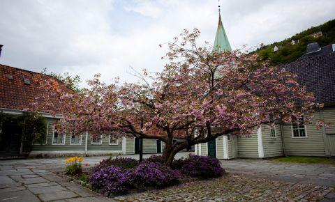 Muzeul Leprei din Bergen