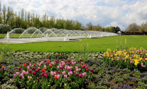 Parcul Nordpark din Dusseldorf