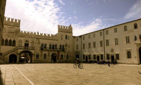 Palatul Vissich Nardi din Koper