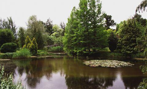 Parcul Arboretum din Erdotelek