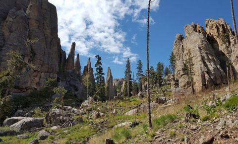 Parcul Custer din Black Hills