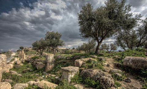 Parcul Hammat din Tiberias