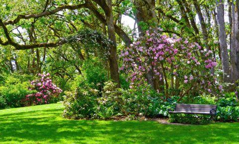 Parcul Hendricks din Eugene
