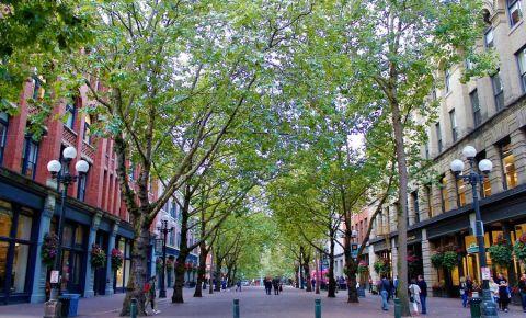 Parcul Occidental din Seattle