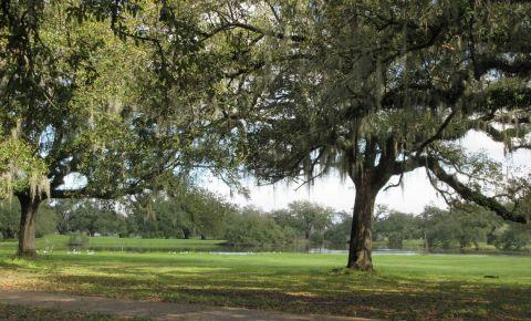 Parcul Orasului New Orleans
