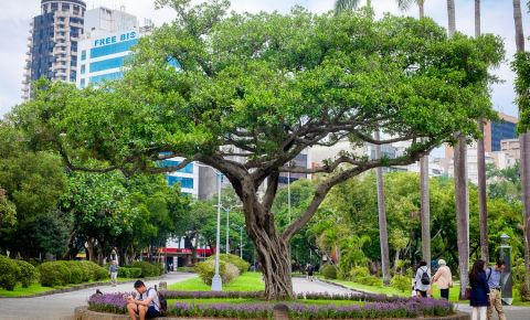 Parcul Pacii din Taipei