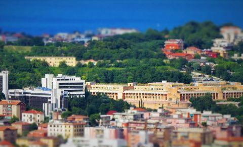Primaria din Ancona
