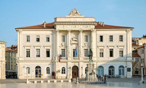 Primaria Orasului Piran