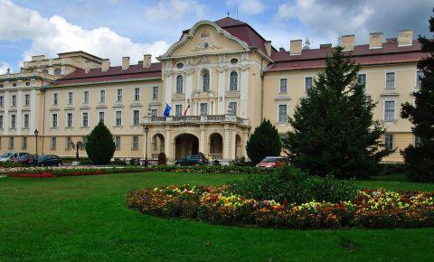 Universitatea Sfantul Stefan din Godollo
