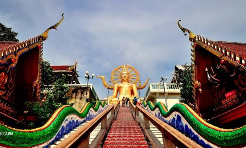 Urmele lui Buddha