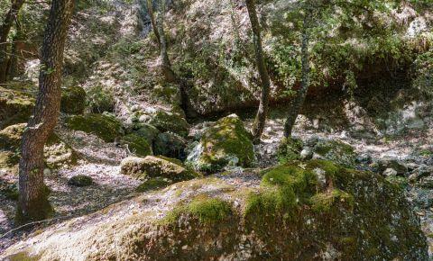 Valea Fluturilor din Insula Rodos