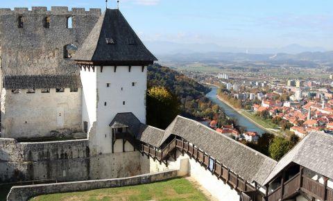 Vechiul Castel din Celje