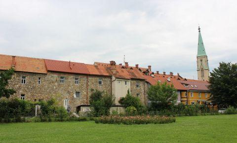 Vechiul Palat Regional din Celje