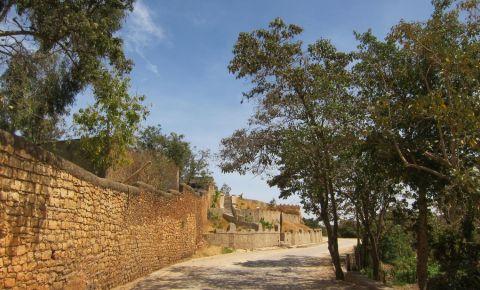 Zidurile Orasului Harar