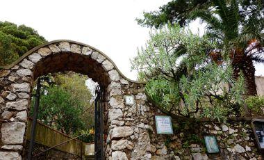 Biserica San Michele din Insula Capri