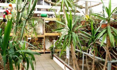 Casa Reptilelor din Malmo